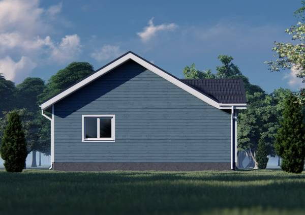 Фасад дачного дома с одним окном визуализация проекта.