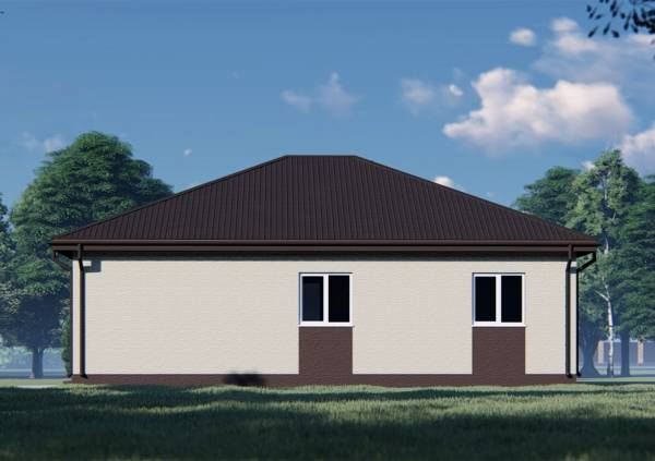 Фасад с двумя окнами двуцветный одноэтажный 11х13